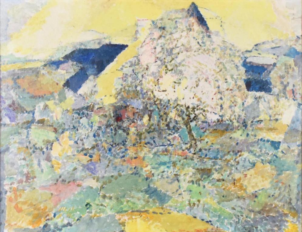 1968-1-Verger-en-fleurs-pres-de-la-maison